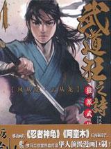 武道狂之诗1-18书籍封面