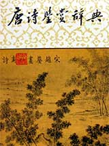 唐诗鉴赏辞典书籍封面