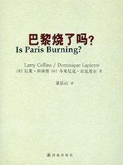 巴黎烧了吗?电子书下载