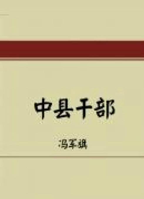 中县干部封面图片